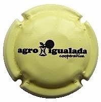 AGRO IGUALADA COOP.--X.89993