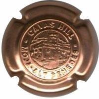 CAVAS HILL--V.13535-X.80288