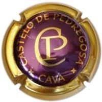 CASTELO DE PEDREGOSA-V.2811-X.01471