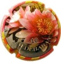 ALDEBARAN--V.11129-X.35123
