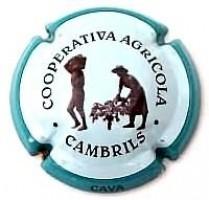 COOP. DE CAMBRILS--V.10719-X.34607