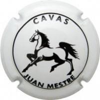JUAN MESTRE--V.10813-X.23423