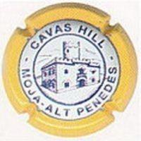 CAVAS HILL-V.2487--X.06186