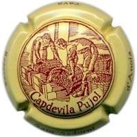 CAPDEVILA PUJOL--V.17876-X.55803