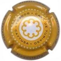 CAYTUSA-A151-X.34857