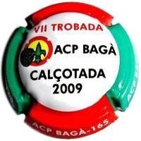 VII Trobada ACP Bagà Calçotada 2009