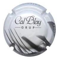 Cal Blay Grup.