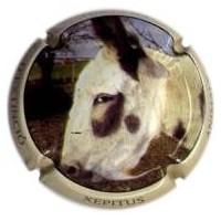 XEPITUS-V.11114-X.18999