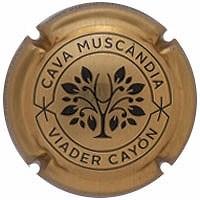 MUSCANDIA--X.127751