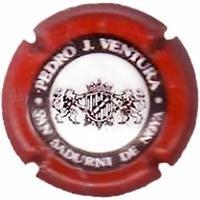 PEDRO J.VENTURA-V.0604--X.13421 (ESCUT GROS)