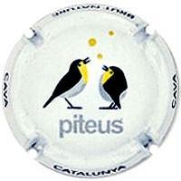 PITEUS--X.97071