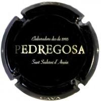 CASTELO DE PEDREGOSA--X.149840