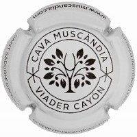 MUSCANDIA--X.176571
