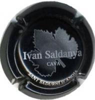 IVAN SALDANYA-V.4307--X.20219