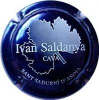 IVAN SALDANYA-V.3133--X.01863