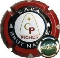 PICHER--X.26458 (LOT 2004/15 VERD)