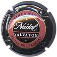 NADAL-V.1916--X.00301