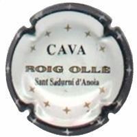 ROIG OLLE-V.0882--X.01040