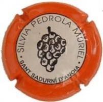 SILVIA PEDROLA-V.3415--X.09766
