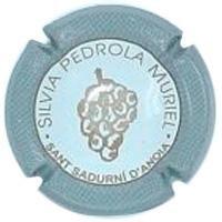 SILVIA PEDROLA-V.5072--X.05817