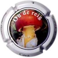 FUCHS DE VIDAL-V.9925-X.31811