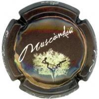 MUSCANDIA--X.72409