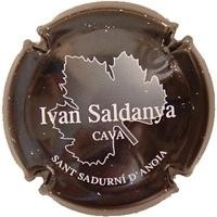IVAN SALDANYA-V.4554-X.09779