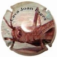 JOAN PIÑOL-V.9941-X.32092